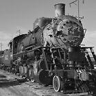 Old Train by Richard Skoropat