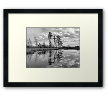 The Pond in Rabbit Wood Framed Print