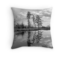 The Pond in Rabbit Wood Throw Pillow