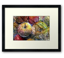 stone fruit Framed Print