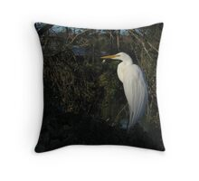 Sunning Stunner Throw Pillow