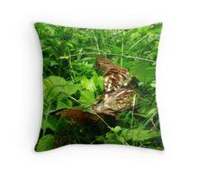 Partridge 2 Throw Pillow