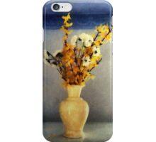 Spring Spice iPhone Case/Skin