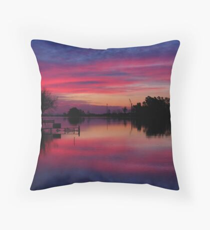 Ebro Delta, Spain Throw Pillow