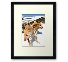 Snow stompin' in the alpujarras, Spain Framed Print
