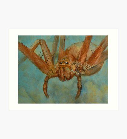 Fido-Hawaiian Cane Spider Art Print