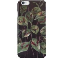 'Painter's Palette' iPhone Case/Skin
