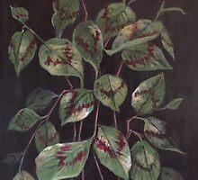 'Painter's Palette' by Randy  Burns