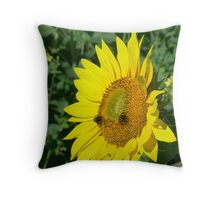 Fabulous Sunflower Throw Pillow