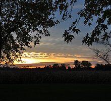 Selma Country Sunrise 10/22/09 by mltrue
