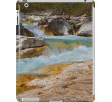 Marble Canyon iPad Case/Skin