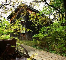 De Laurier Homestead by tanmari