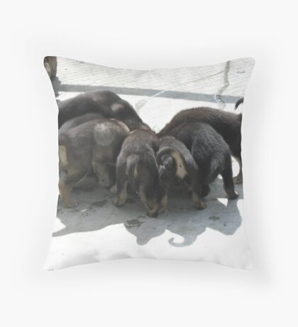 Puppies Eating Throw Pillow