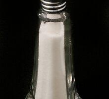 Antique Salt shaker by Jeffrey  Sinnock