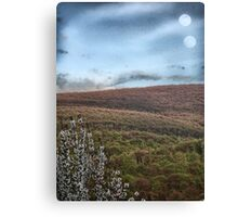 Surreal woods Canvas Print