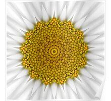 Daisy Kaleidoscope Poster