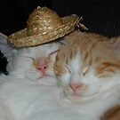 Sister kitties with Straw Hat by LOJOHA