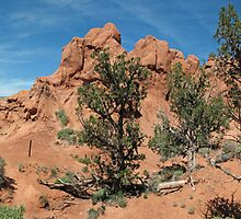 Shakespeare Arch- Kodachrome State Park, Utah by roguebearbu
