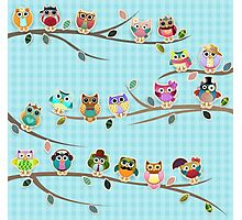 Cute Owls on a Branch with Stripes Photographic Print