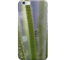 It's in the Lines  - JUSTART © iPhone Case/Skin