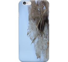 Winter Hydrangea  - JUSTART © iPhone Case/Skin