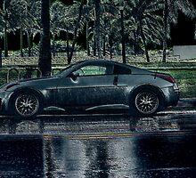 Zeein' In The Rain by Bob Wall