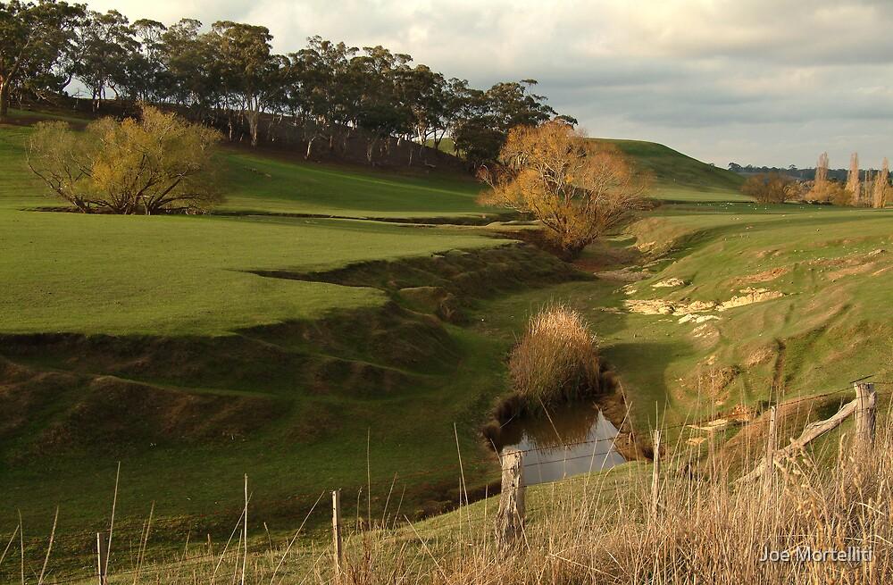Green Pasture,Daylesford District by Joe Mortelliti