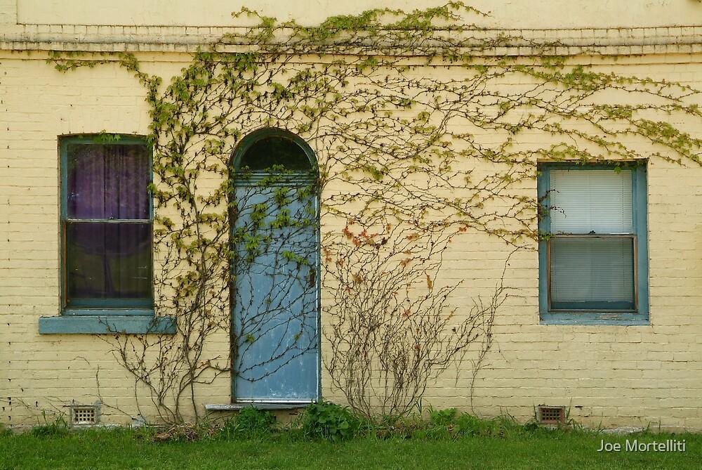 Overgrown by Joe Mortelliti