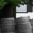 Constansia Wine Farm - Cape Town by Corien