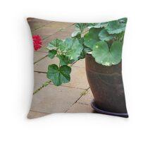 Cascading geraniums Throw Pillow