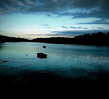 Riverside View in Cornwall by kaspartrench