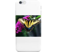 #140 Tiger Swallowtail On Butterfly Bush iPhone Case/Skin