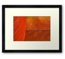 Natural Textures Framed Print