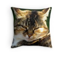 Cranky Cat Throw Pillow