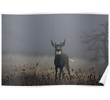Big Buck - White-tailed Deer Poster