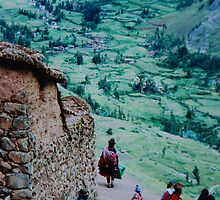 Andean Scene by Alessandro Pinto