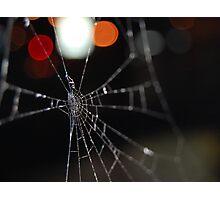 macro spider web Photographic Print