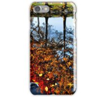 Boston, Fall Reflection  iPhone Case/Skin