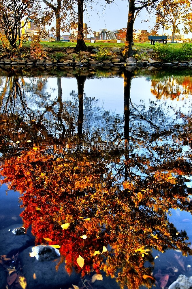 Boston, Fall Reflection  by LudaNayvelt