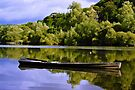 fishing cot, River Nore, Inistioge, County Kilkenny, Ireland by Andrew Jones
