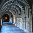 Princeton University by reindeer