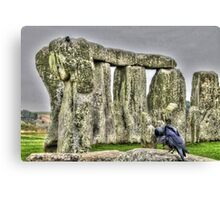 The Stones & The Crow Canvas Print