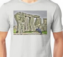 The Stones & The Crow Unisex T-Shirt