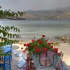 Argostoli Cart 2 by Paul Thompson Photography