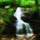 Crabtree Falls 1 by virginian