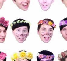 Dan and Phil- Flower Crowns Sticker