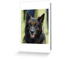 watching watchdog Greeting Card