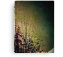 Lingering reverie Canvas Print