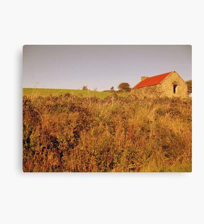 Rural Irish cabin Canvas Print