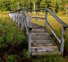 Marsh Bridge/ Wooden Walkway by raneangel